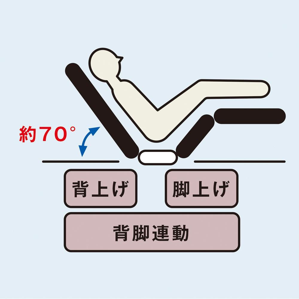 【非課税対象商品】照明付き電動リクライニングベッド 2モーター仕様により、背部と脚部を別々に動かすことができます。