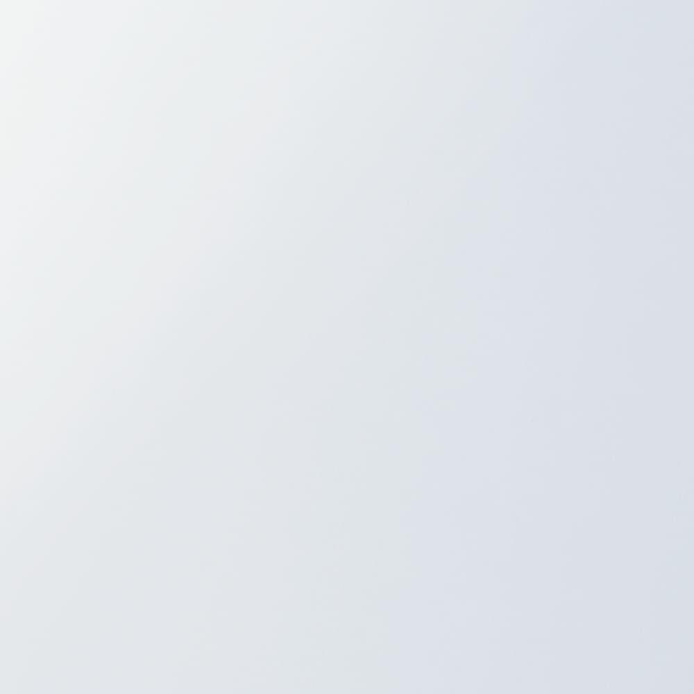 奥行44cm 生活感を隠すリビング壁面収納シリーズ 収納庫 ミラー扉タイプ 幅40cm (ア)ホワイト