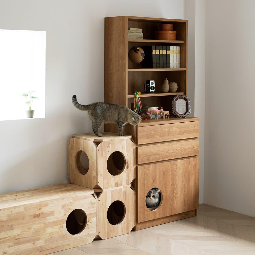 キャトハス ペットベンチ S (ペットと一緒に使える天然木ベンチ) コーディネート例 ※お届けする商品は写真中央のペットベンチSサイズ1個になります。