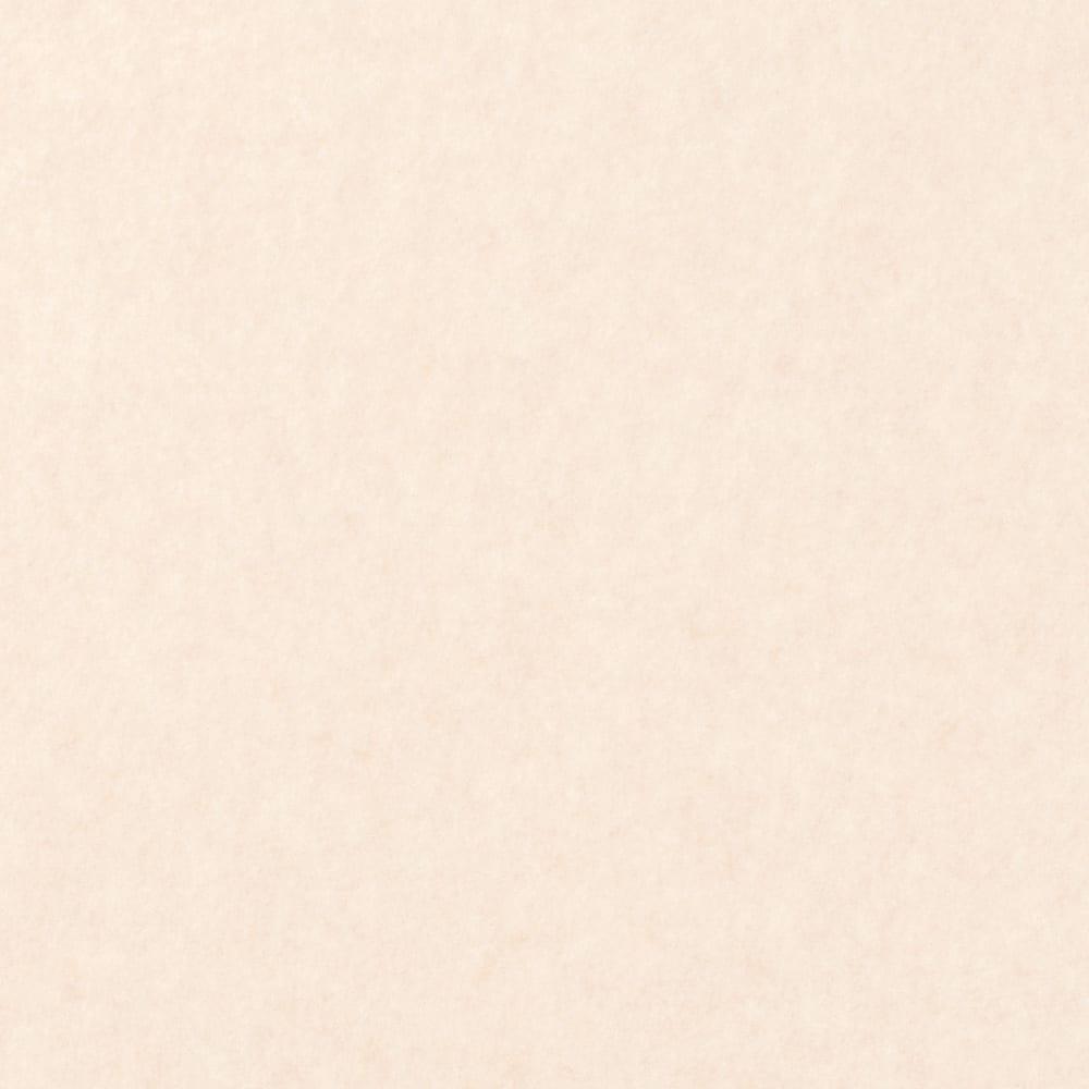 カテキン消臭&はっ水 おくだけ吸着タイルマット(30×30cm) (ア)ベージュ(ライトベージュ)