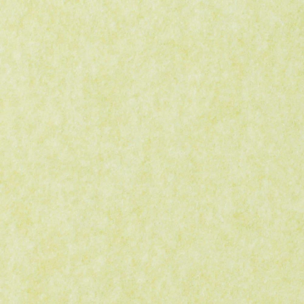 カテキン消臭&はっ水 おくだけ吸着タイルマット 大判タイルマット(60×45cm) (イ)ライトグリーン