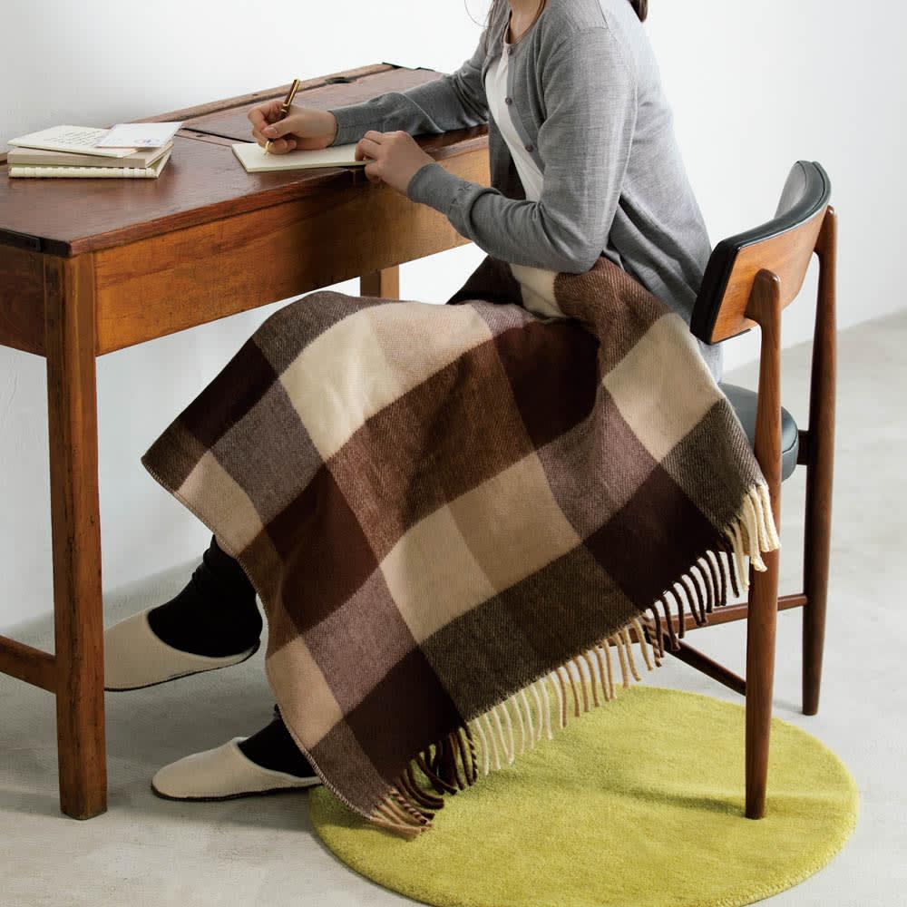 洗えるカラフルチェック電気ブランケット(電気毛布) 82×140cm (イ)ブラウンチェック 受験勉強やデスクで作業時のひざ掛けにも。頭寒足熱ではかどります。