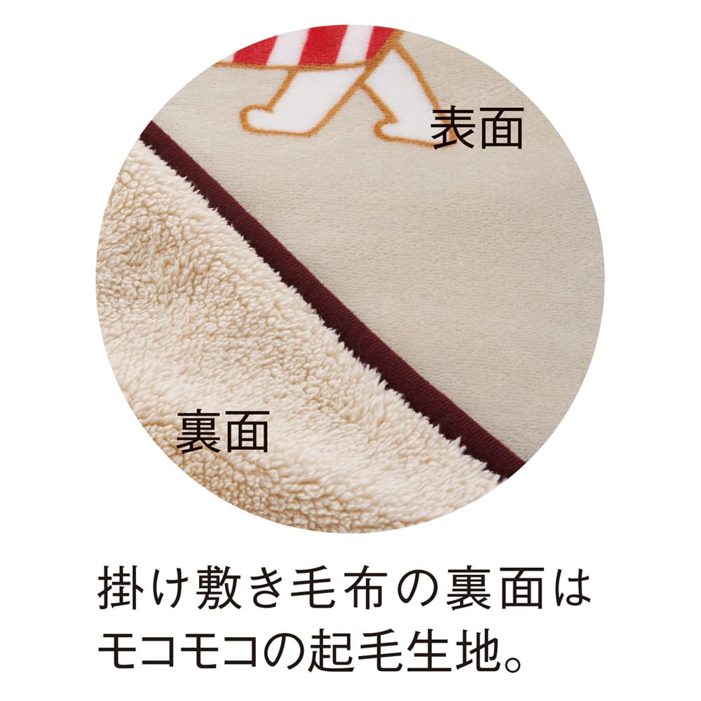 LISA LARSON/リサ・ラーソン電気毛布シリーズ 電気掛け敷き毛布