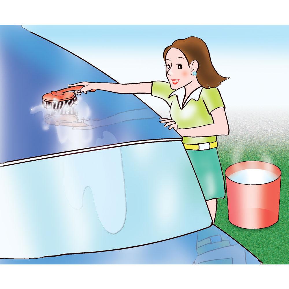 お風呂のハイパワーヒーター「沸かし太郎」 洗車に