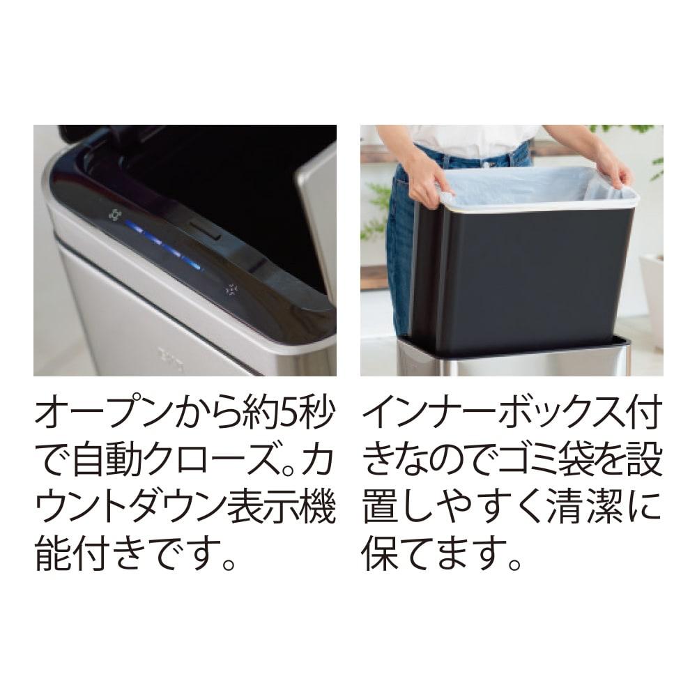 自動で開閉センサー付き ダストビン 縦型30L(保証3年付き) EKO デラックスファントム インナーボックスがあるので、万が一ビニール袋が破けても安心です。