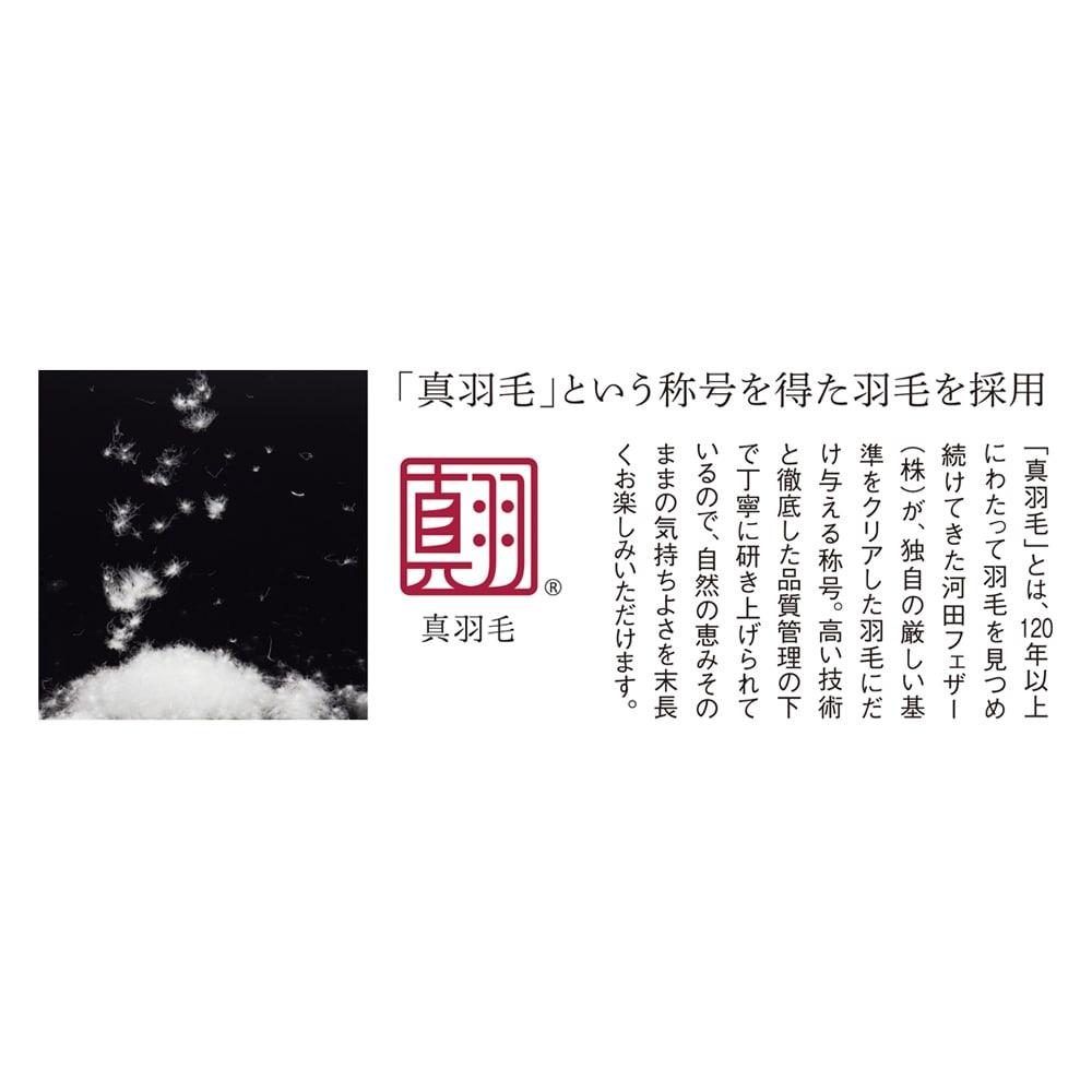 5つ星ラベル☆☆☆☆☆「真羽毛」という称号を得た羽毛を採用 「まごころ UMOU FUTON(羽毛布団)」掛け布団