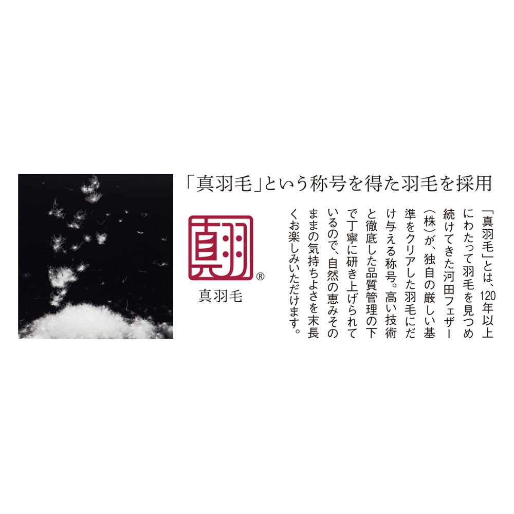 5つ星ラベル☆☆☆☆☆「真羽毛」という称号を得た羽毛を採用 「まごころ UMOU FUTON(羽毛布団)」2枚合わせ掛け布団