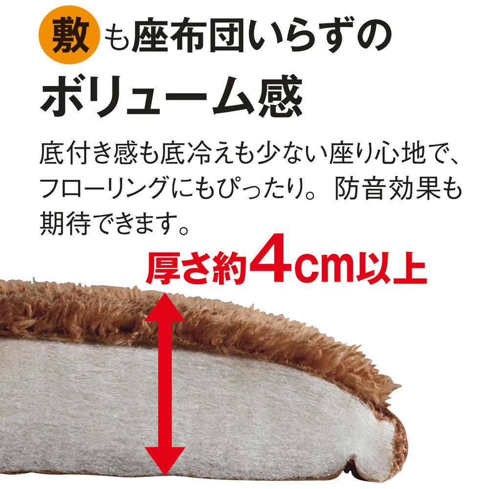マイクロファイバーふわっふわシープ調ふっくらこたつ敷き(厚さ約4cm) (イ)ブラウン