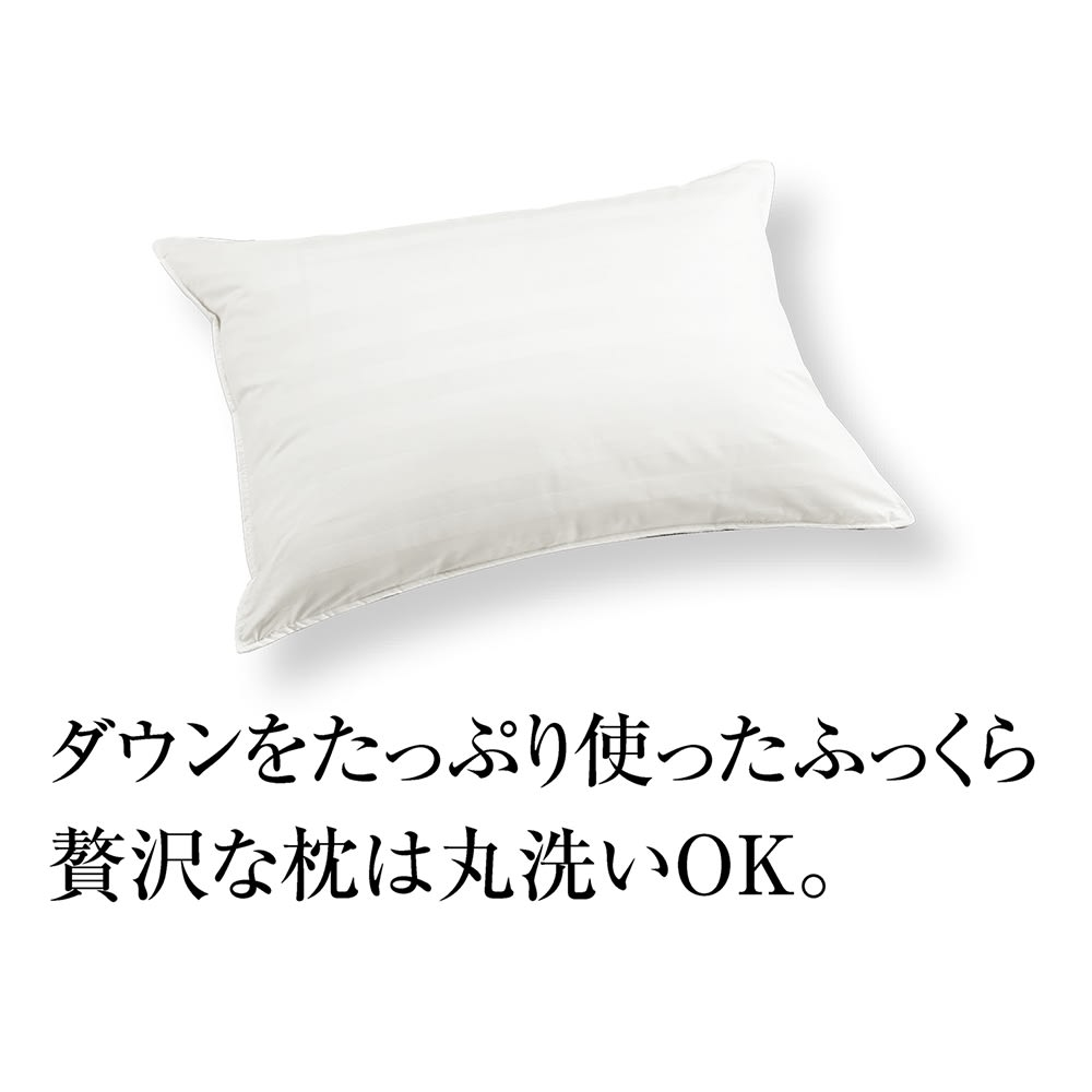 ベッド 寝具 布団 枕 抱き枕 普通判(ホテルライクな高級感 洗える消臭羽毛シリーズ ダウン枕) 526901