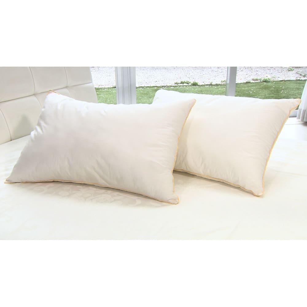 ベッド 寝具 布団 枕 抱き枕 フィベールピロープレミアム ピローケース付き 大判(1個) 526922