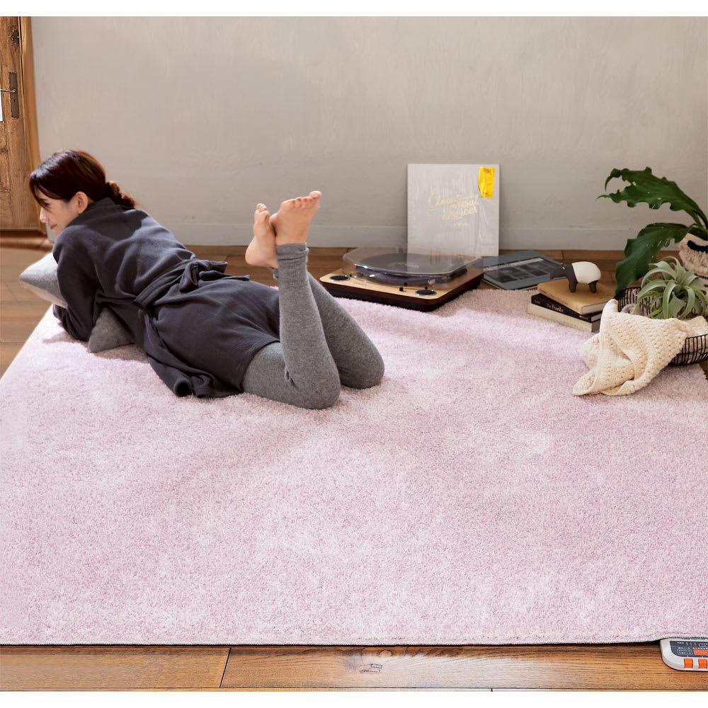 カーテン 敷物 ソファカバー カーペット ラグ マット 洗えるラグ 約190×240cm(洗えるモチフワ防ダニ抗菌ラグ) 529004
