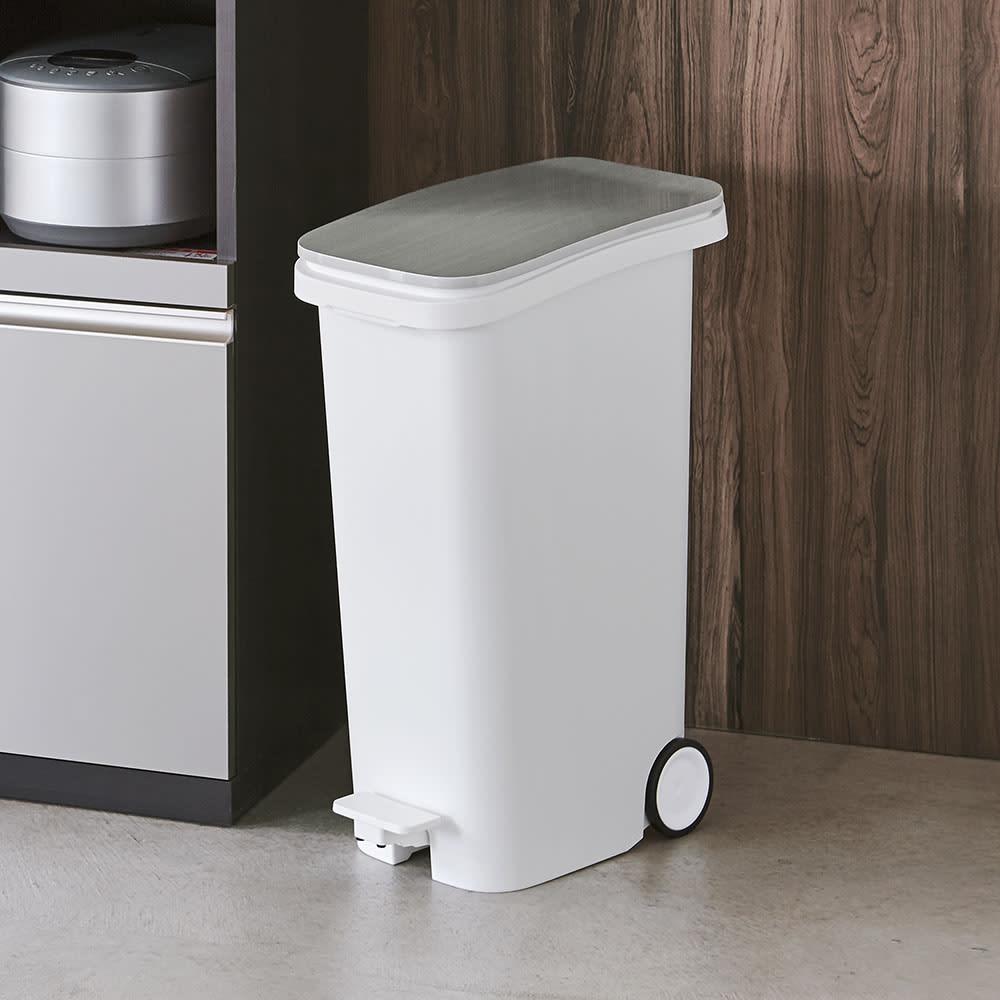 光沢がおしゃれなキャスター付きダストボックス SMOOTH キッチンにおしゃれに置ける、モダンなデザインのダストボックスです。(ウ)メタル