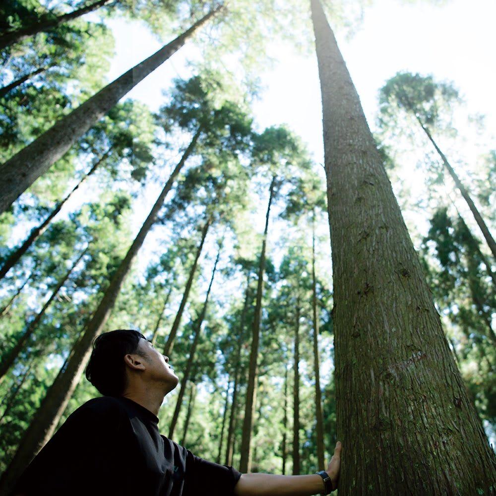 日田杉 モダンブックラック 幅89cm 高さ180cm