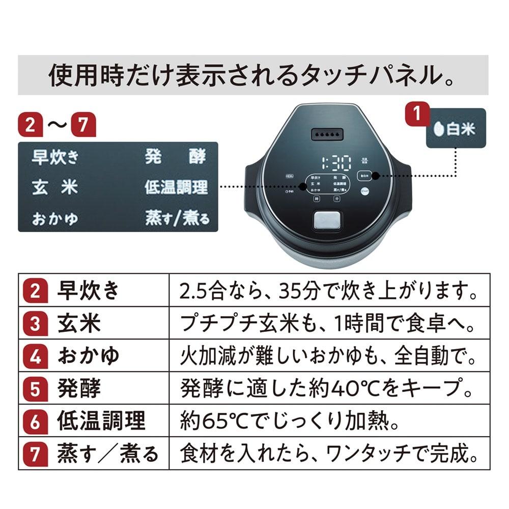 recolte 低温調理もできるコンパクトライスクッカー