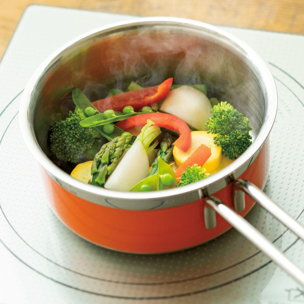 vitacraft/ビタクラフト コロラド4点セット 片手鍋+両手鍋(浅型)+両手鍋(深型)+パンチングザル 無水調理 食材の栄養分や旨味の流出を防ぎ、野菜の本来の甘さを引き出します。