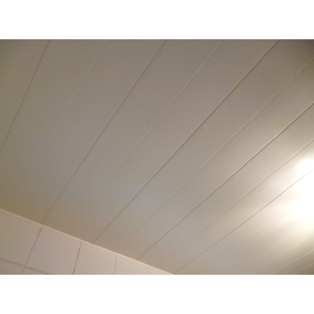 お風呂掃除専用クリーナー アミロン カビクリーン 掃除のしにくい浴室の天井に