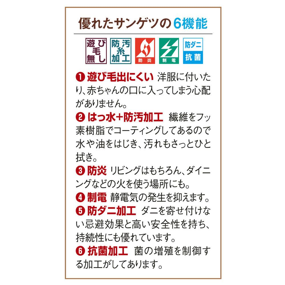 サンゲツ6機能カーペット 団地間 長4畳【フリーカット(変形)サービス】