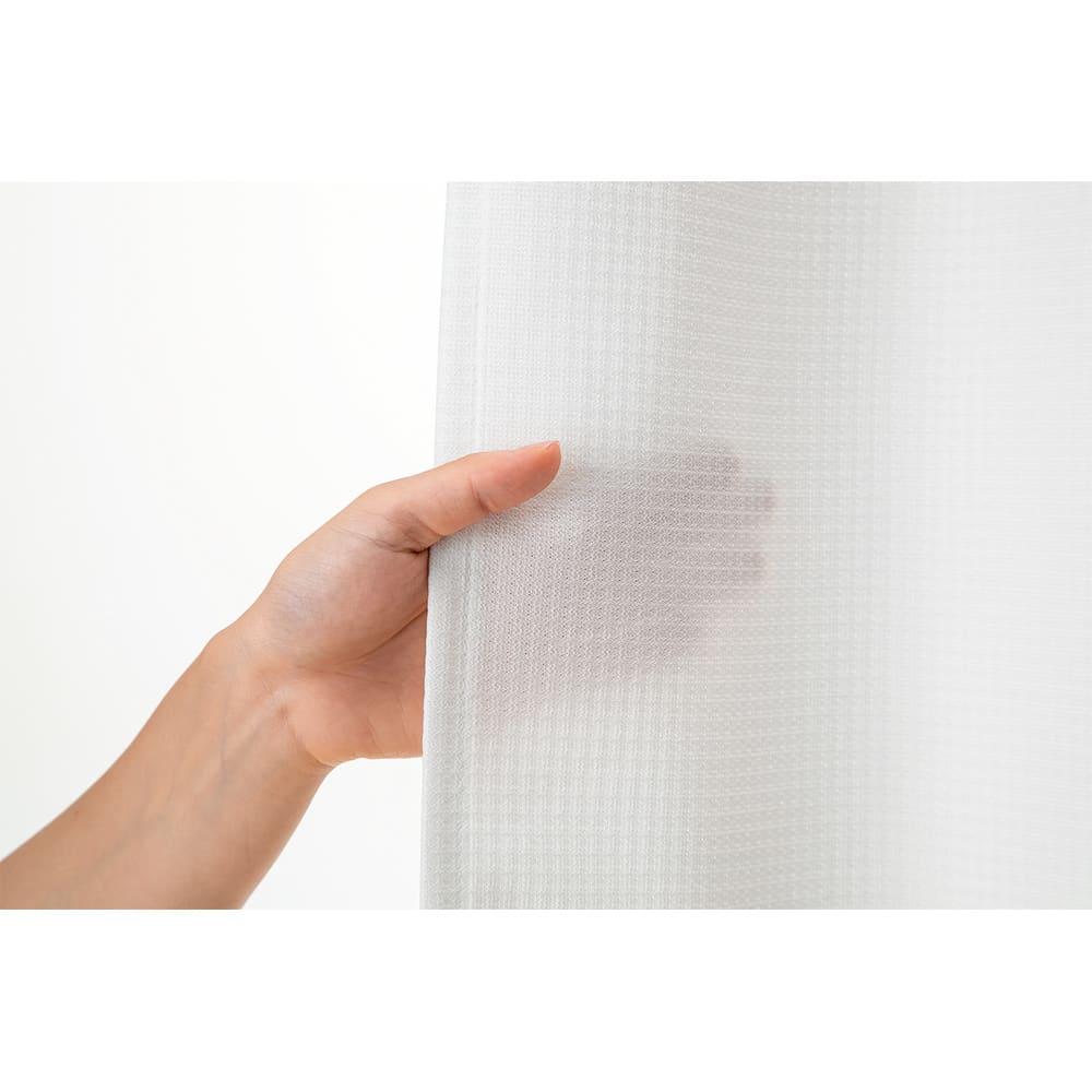 遮熱・制菌・防炎多機能レースカーテン2枚組 適度な透け感