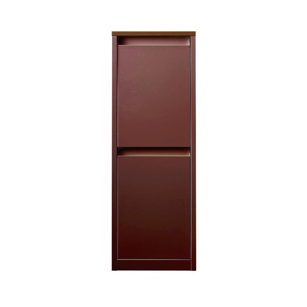 カラフルなペールでわかりやすく分別できる スチール製ダストボックス 幅32cm 高さ95cm (イ)ブラウン