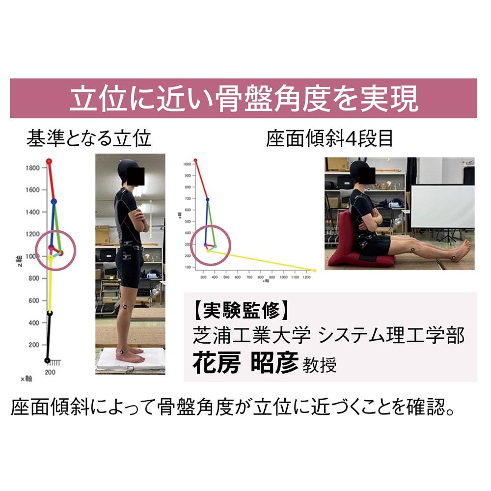 テレワークにおすすめ日本製ZAGUN(ザグーン)フロアチェアスラント