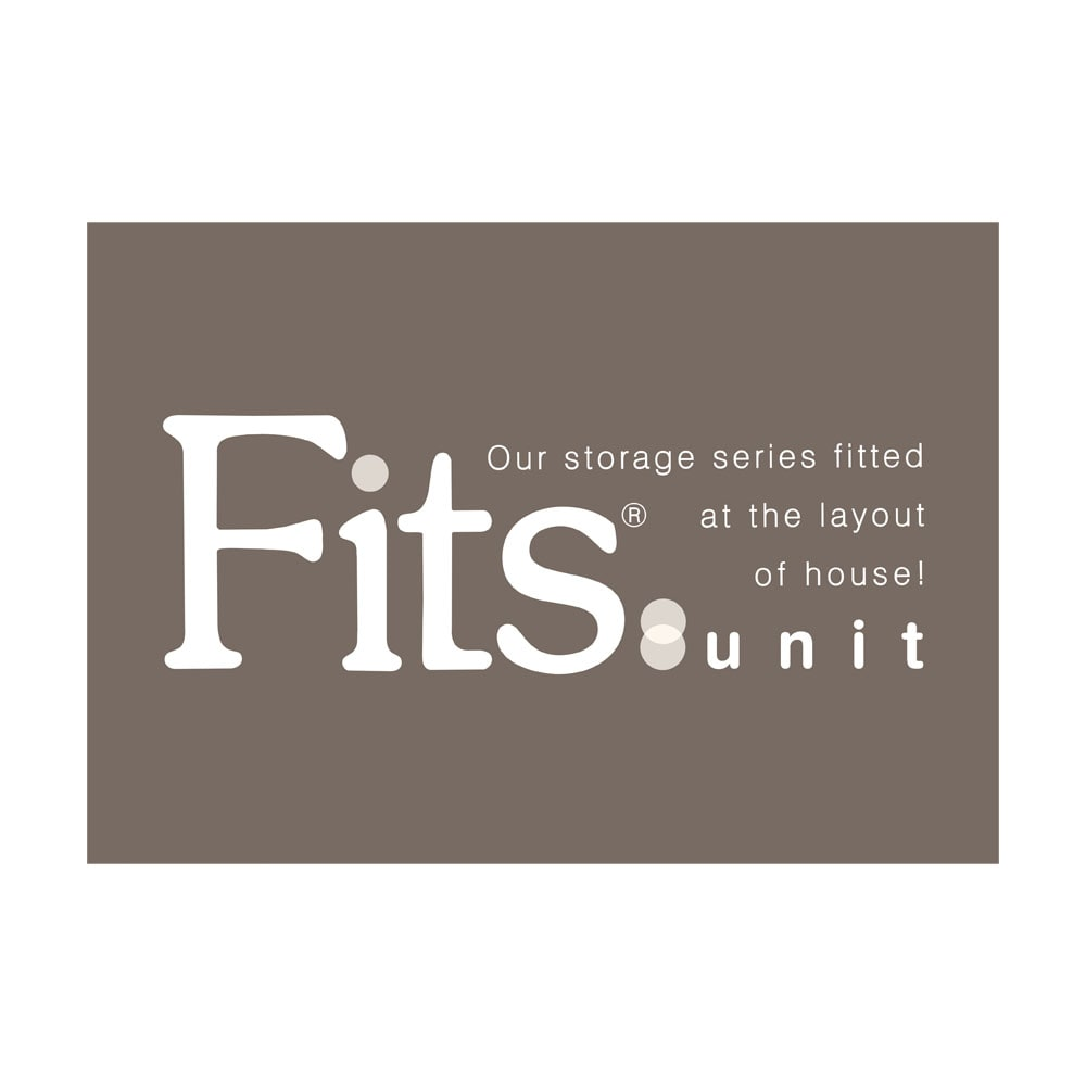 【新色のホワイト初登場!】フィッツユニット(Fits unit)収納ケース2個組 【奥行55cmタイプ】幅45・高さ25cm