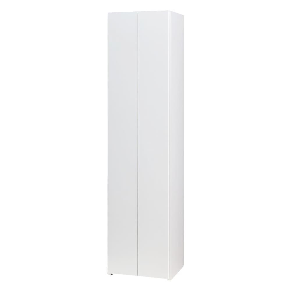 エントランス納戸シューズボックス 棚のみ 幅45cm (イ)ホワイト