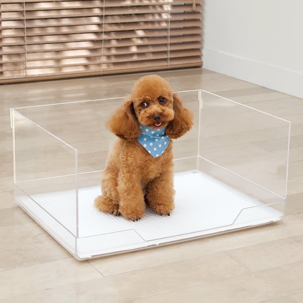 クリアトワレシリーズ レギュラー 飛散ガード付き 【小~中型犬用・5kg未満】 前面は、ワンちゃんが出入りしやすい形状。 飛散ガードとトイレ本体は、簡単に取り外せます。