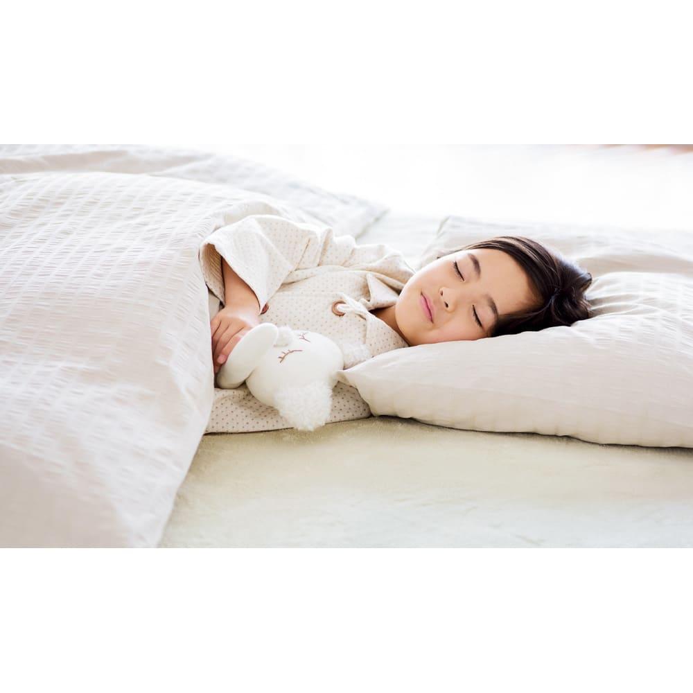 日革研究所 「ダニ捕りロボ」 詰め替え誘引マット ラージサイズ 5枚セット ダニのいない快適な睡眠を。