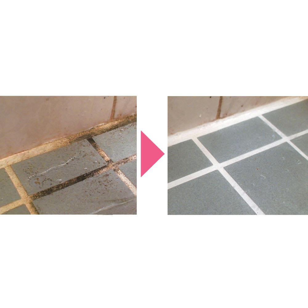 業務用 強力パイプ洗浄剤「ピカットロンプロ」 2Lセット(1L×2本) 5倍に薄めればスプレーで使用でき、広範囲のタイル掃除もラクラク。