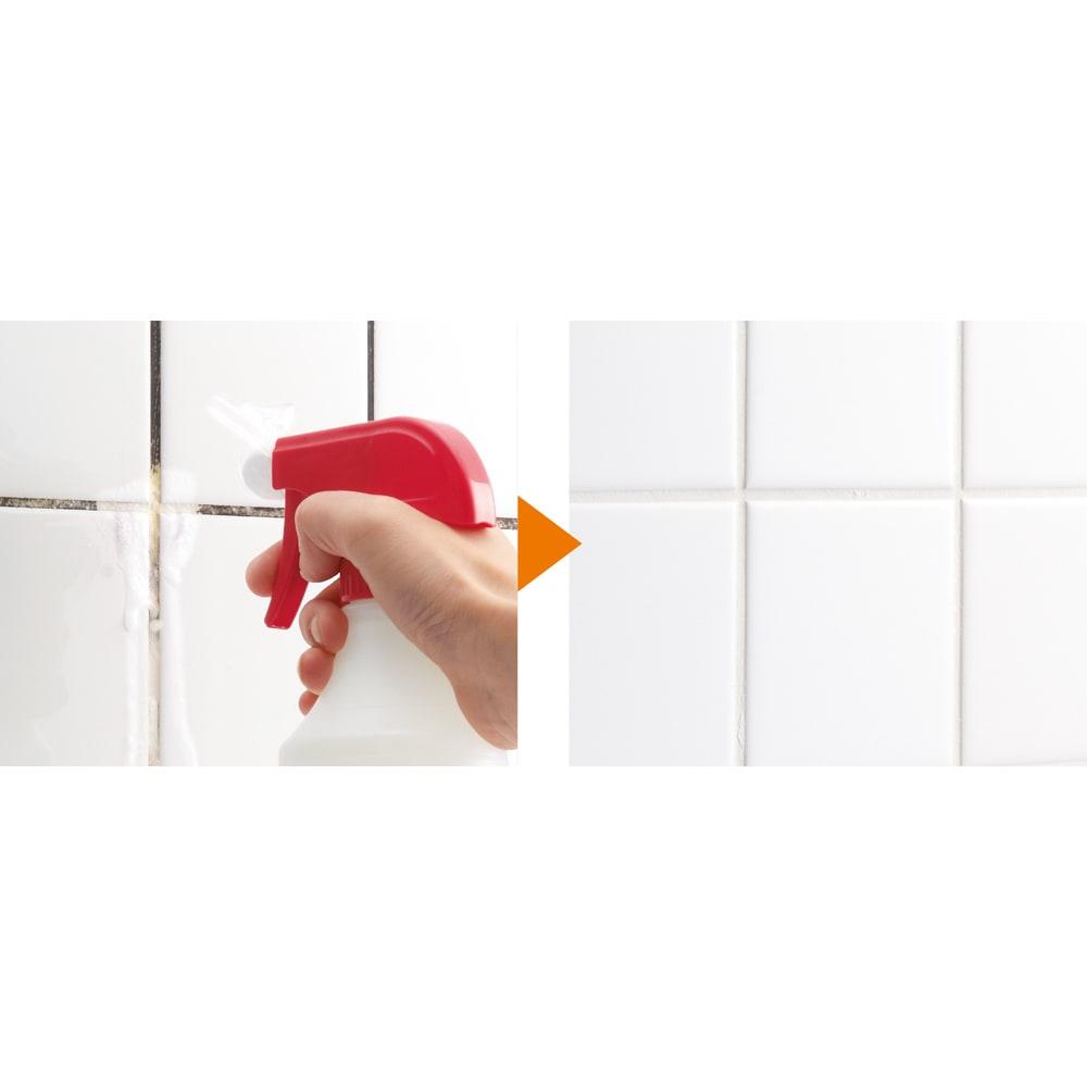 業務用 強力パイプ洗浄剤「ピカットロンプロ」 2Lセット(1L×2本) (タイルの目地)粘性なので流れにくいから、壁にもOK!※スプレーガンが旧商品のものです