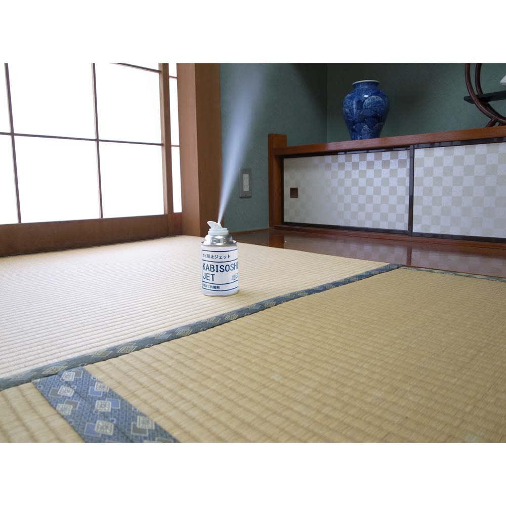 安心空間 カビ阻止ジェット(ホワイトラベル) カビ阻止ジェット1本 全量で12畳までのお部屋に対応。リビングも1本でまるごと処理できます。
