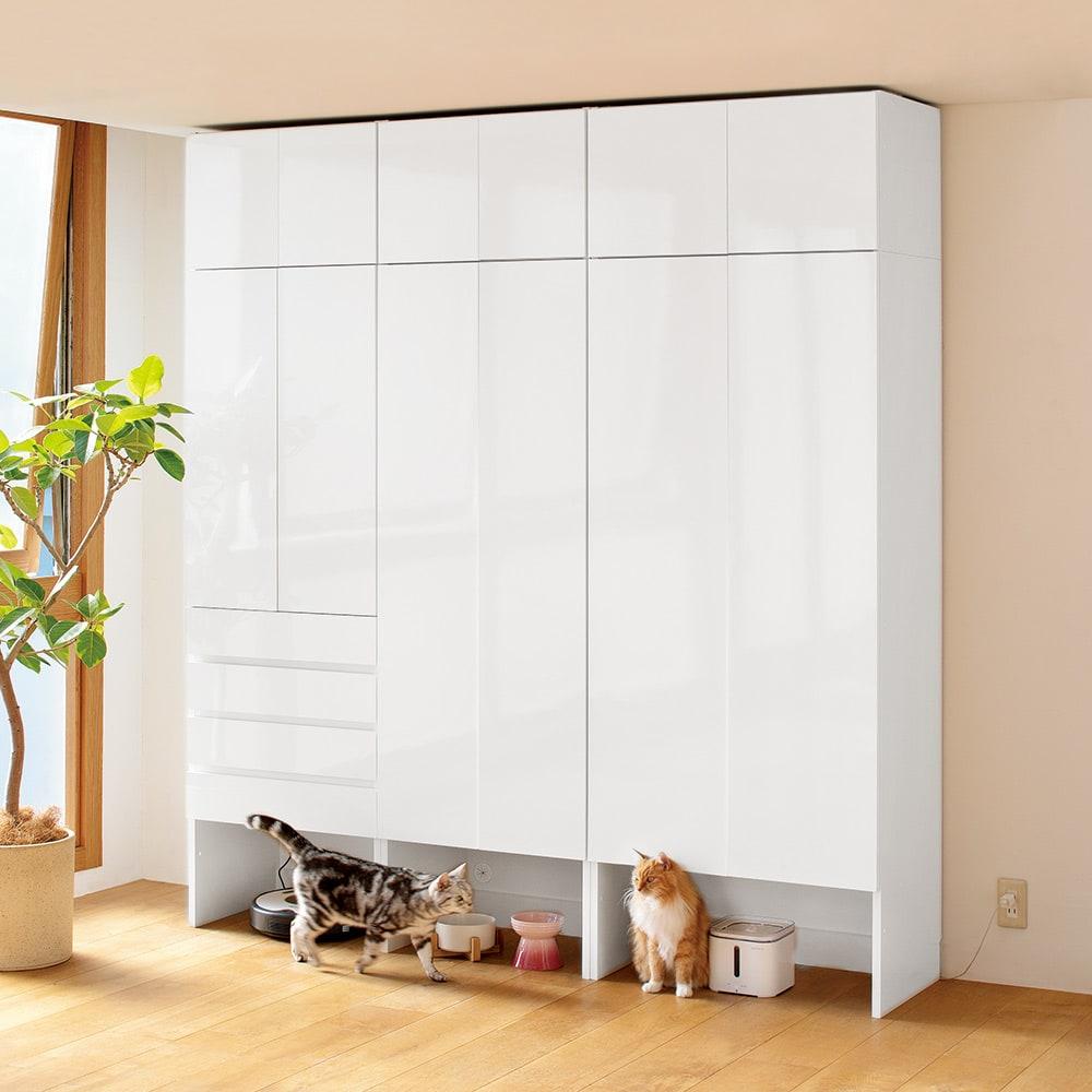 ペットを飼っている人のための下オープン収納庫 上置き 幅60cm高さ30~80cm(高さ1cm単位オーダー) コーディネート例(イ)ホワイト(光沢) ※お届けする商品は写真左上の幅60cmの上置きのみになります。(本棚本体は含まれません)