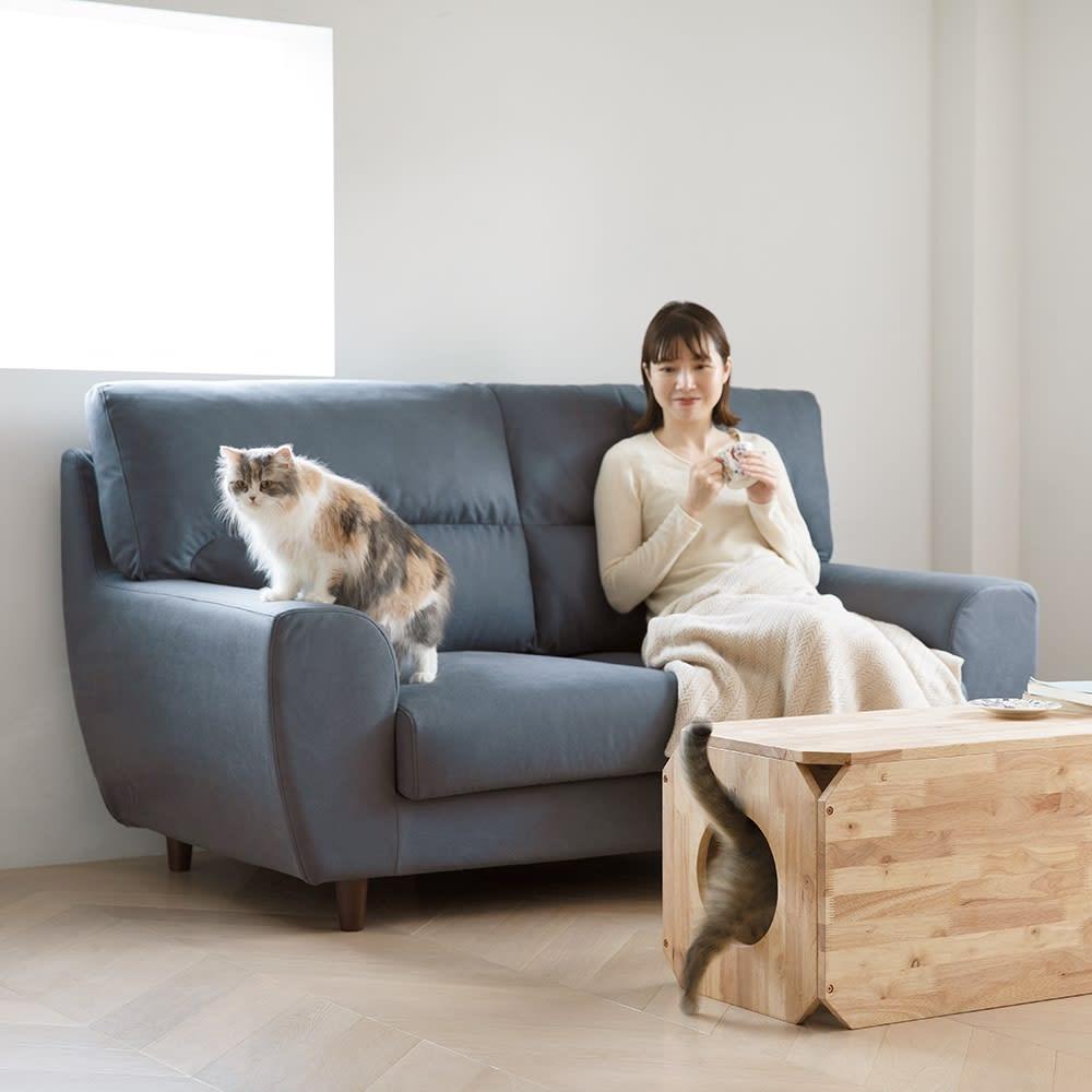 キャトハス ペットベンチ L (ペットと一緒に使える天然木ベンチ) コーディネート例 ※お届けする商品は写真右手前のペットベンチLサイズ1個のみです。