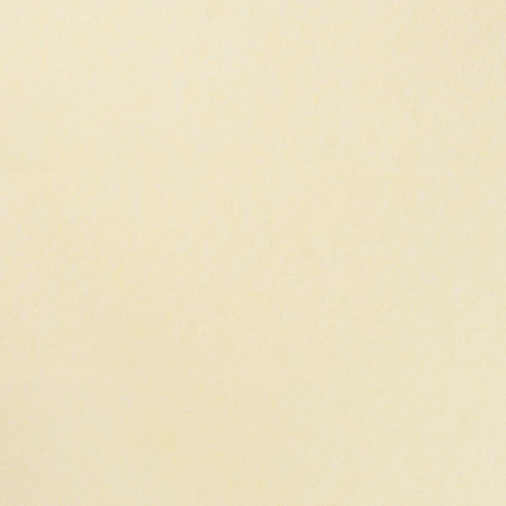 カテキン消臭&はっ水 おくだけ吸着タイルマット 大判タイルマット(60×45cm) (エ)アイボリー