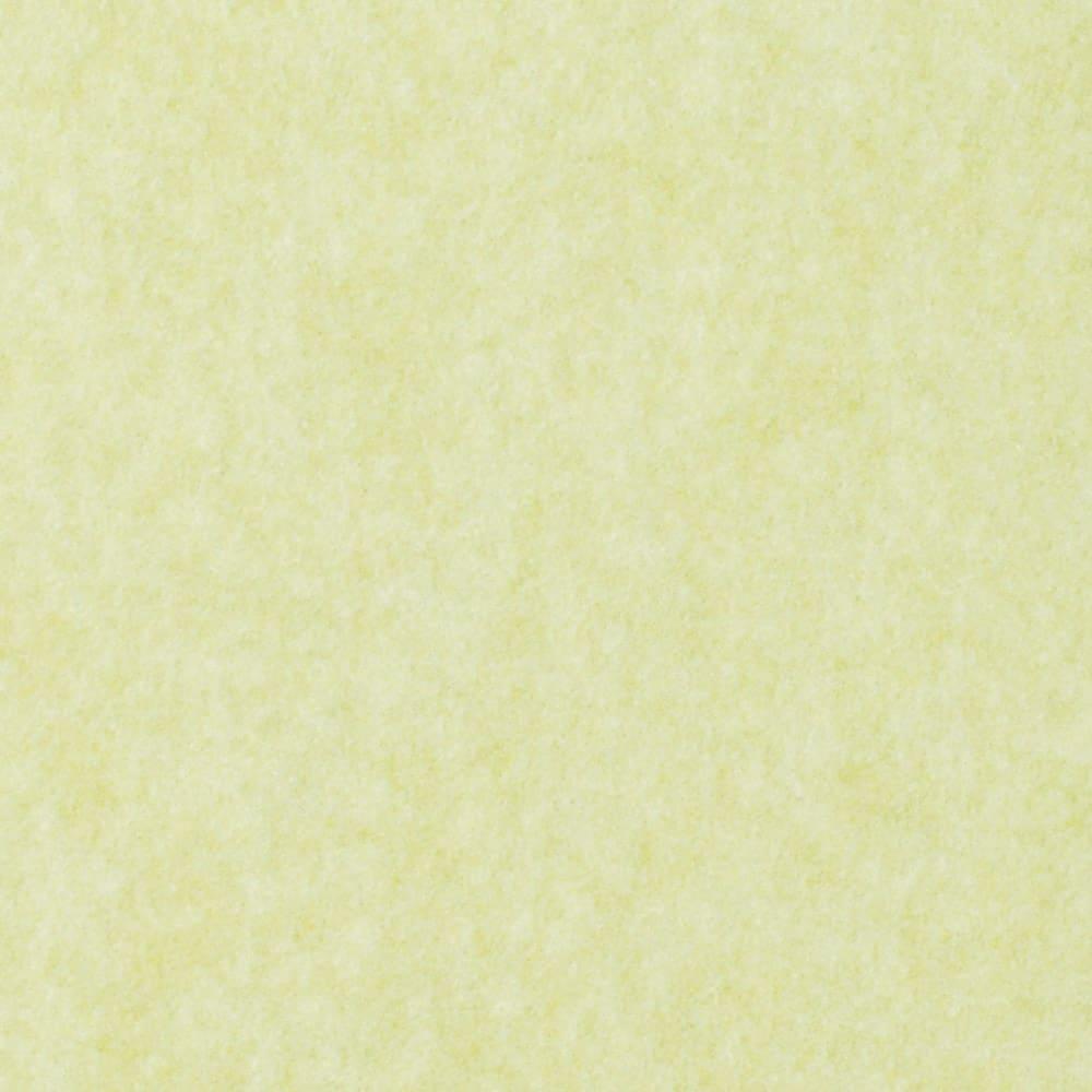 カテキン消臭&はっ水 おくだけ吸着ロングマット(1枚)(幅60cm) (イ)ライトグリーン