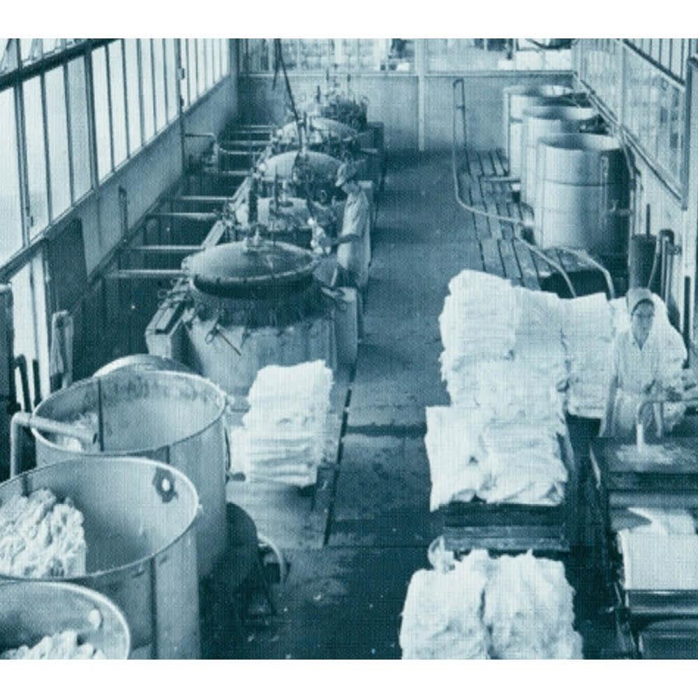 パシーマ(R) EXプラス先染めタイプ ピローケース (写真)創業65年の龍宮(株)脱脂綿工場 パシーマ開発 龍宮株式会社 代表取締役 梯行一 創業65年の歴史を持つふとんメーカーで医療用の脱脂綿・ガーゼを生産、紡績・精製・縫製・形状に至るまで、こだわりの独自の製法で「パシーマ」が生まれています。