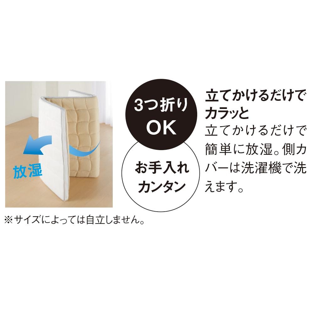 朝が違う。敷布団の決定版! ブレスエアー(R)敷布団 ネオ シリーズ 3つ折り敷布団 立てかけて放湿OK!※サイズによっては自立しない場合がございます。