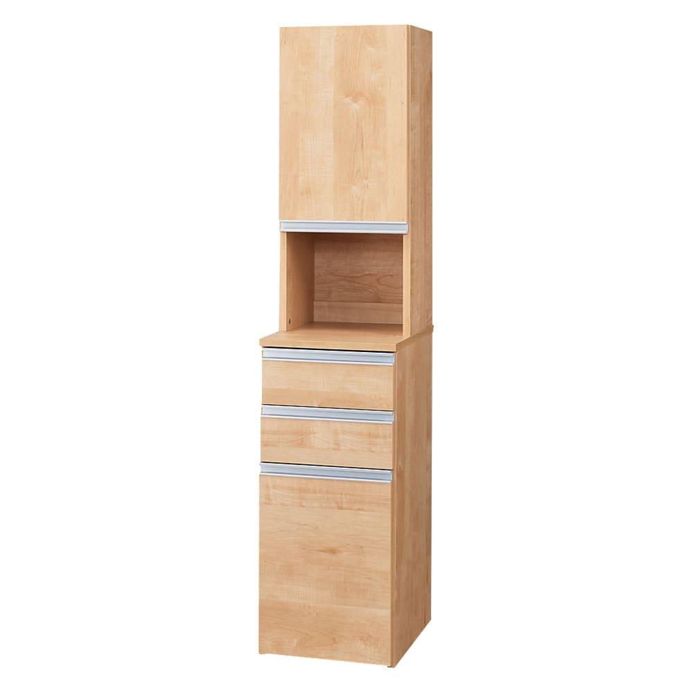 家具 収納 キッチン収納 食器棚 キッチン隙間収納 分別ごみ箱付きすき間収納庫 2分別ロータイプ 奥行45高さ85cm 570013