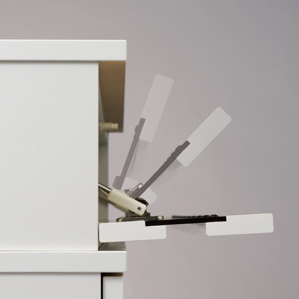 ラインスタイル伸長式テレビ台・テレビボード ロータイプ(高さ48cm) 扉はソフトダウンステーでゆっくり開閉します。