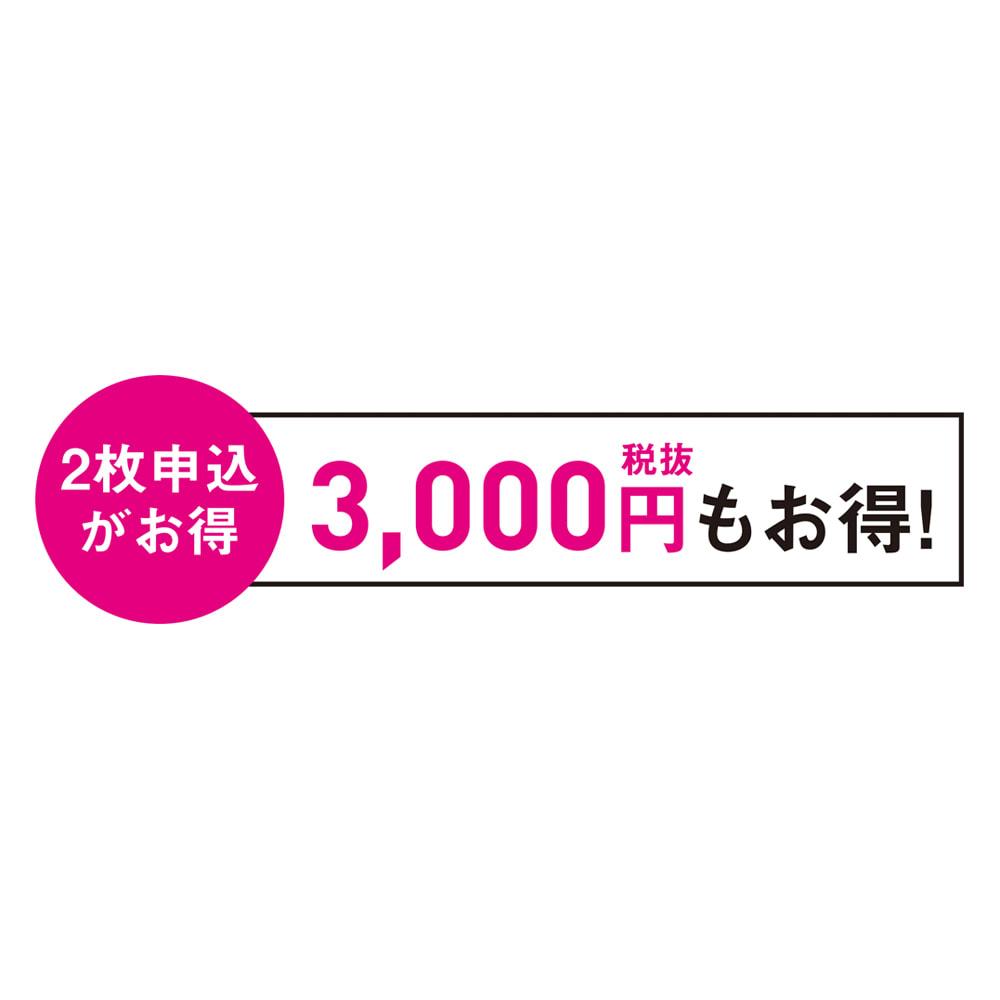 羽毛布団フルリフォームシリーズ 新プラチナコース 【お得なシングル2枚】