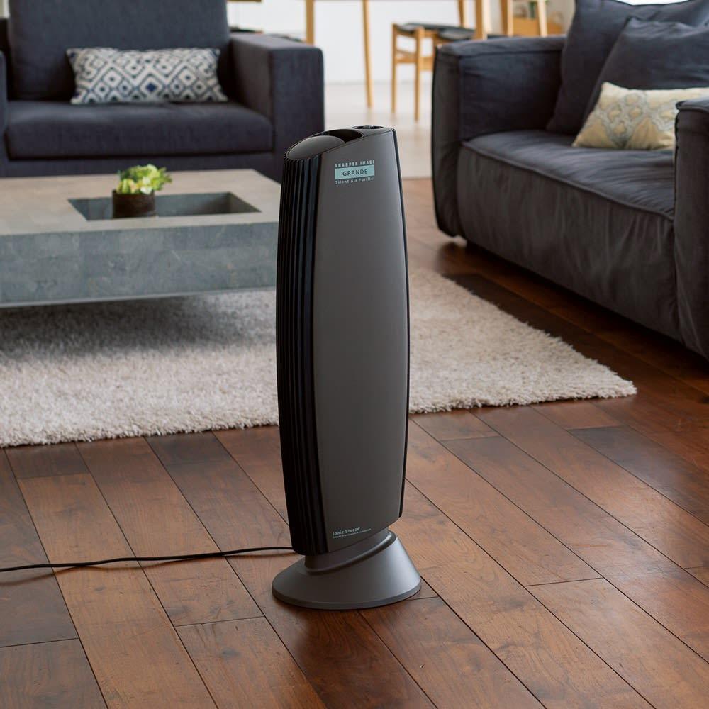 キッチン 家電 電化製品 空気清浄機 イオニックブリーズシリーズ GRANDE 562403