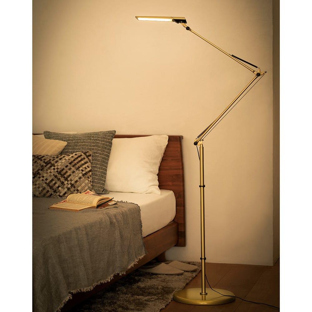 インテリア雑貨 日用品 照明器具 フロアスタンド LEDライト LED電球 フロア型読書灯 LEDエグザーム DIVA 563203