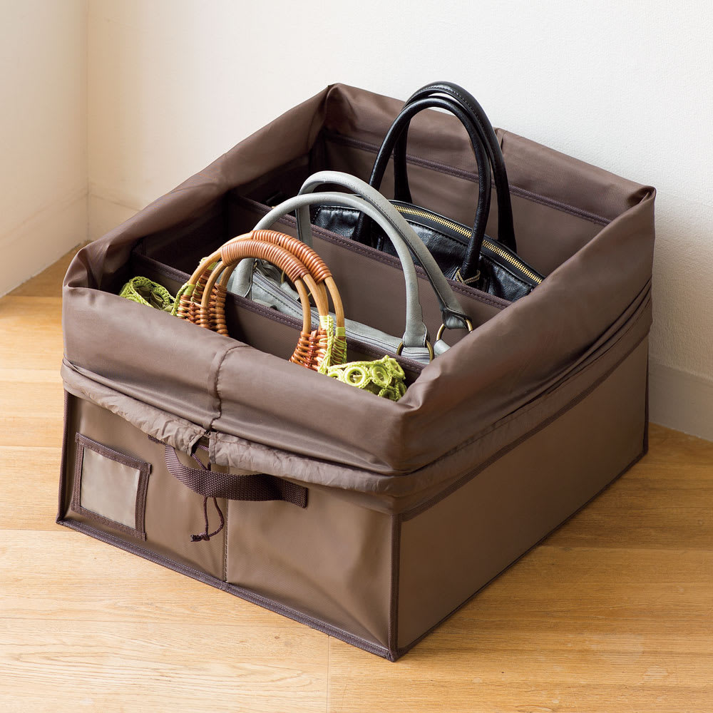 除湿&消臭 バッグ収納ボックス (ア)ブラウン