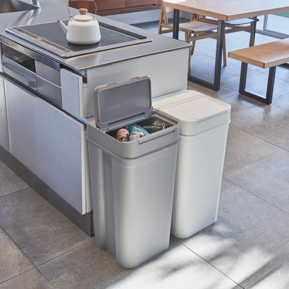 インテリア雑貨 日用品 掃除用品 ゴミ箱 キッチン用ゴミ箱 Seals(シールズ) ダストボックス 45リットル 570112
