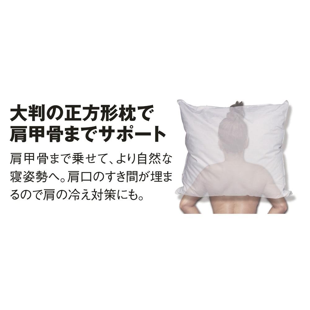 大判 (フォスフレイクス 安眠枕 枕のみ) すき間なく肩までスッポリ 頭・首・肩の3点を支えて頭圧を上手に分散します。