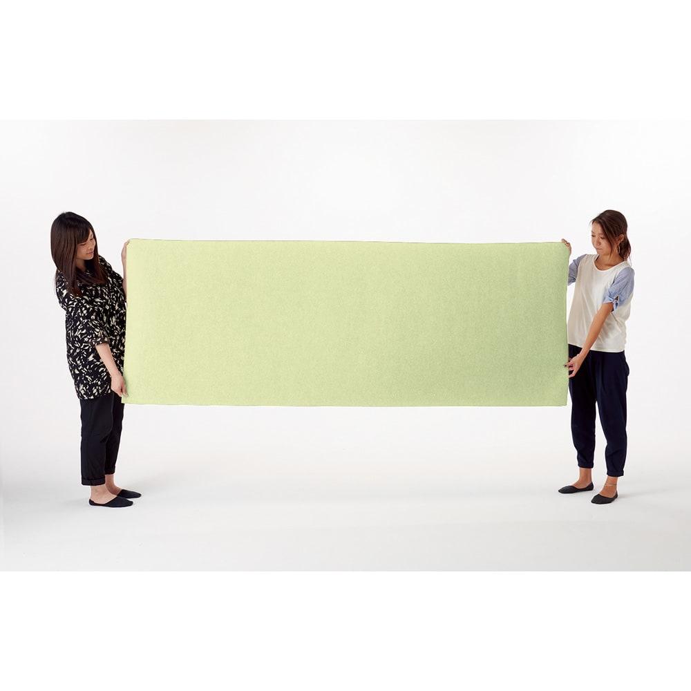 カテキン消臭&はっ水 おくだけ吸着ロングマット(1枚)(幅90cm) (イ)ライトグリーン ロングマットは廊下にぴったりサイズ。掃き出し窓の出入り口などにもおすすめです。※画像は90×240cmです