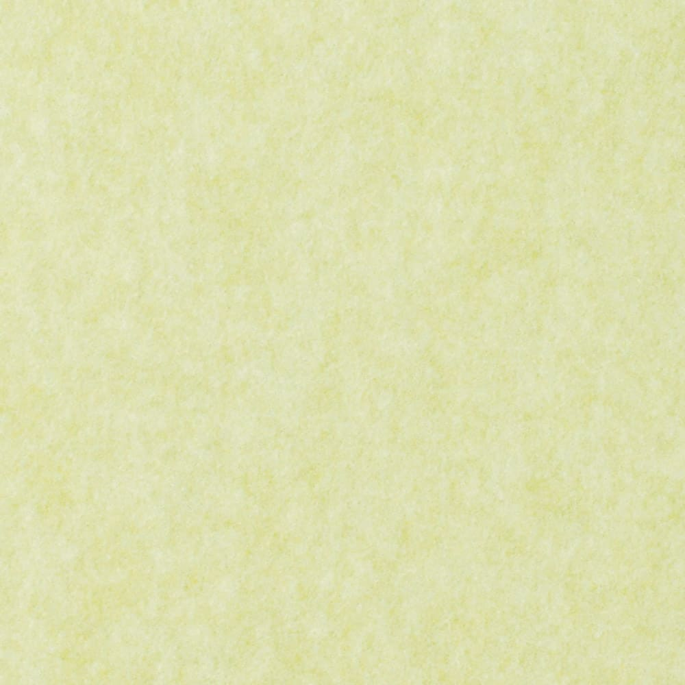 カテキン消臭&はっ水 おくだけ吸着ロングマット(1枚)(幅90cm) (イ)ライトグリーン