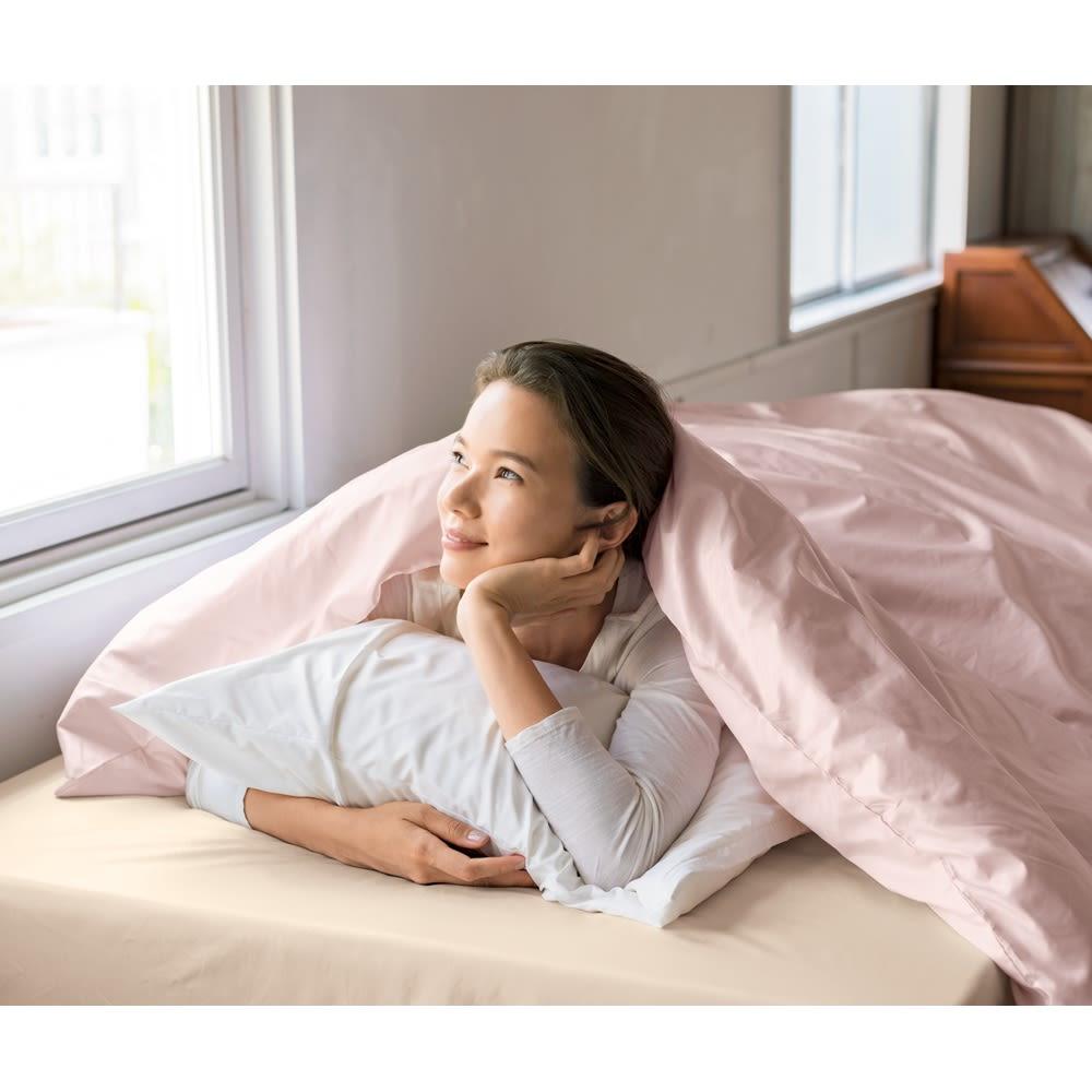ミクロガード(R)カバーリングシリーズ プレミアム ピローケース 普通判(1枚) (ウ)ホワイト ※お届けは枕カバー1枚です。