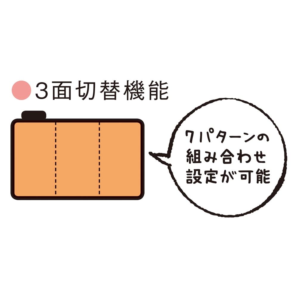 電磁波カットホットカーペット(本体のみ) ●ひかえめ運転機能 ●オフタイマー付き