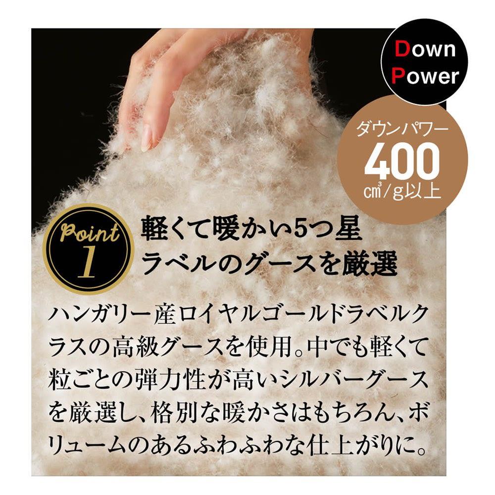 日本ハンガリー国交150周年記念 ノーブルダウン羽毛布団 記念モデルの魅力 ポイント1 ※ダウンパワーとは羽毛のふくらみを1g当たりの体積(cm3/g)で示したものです。その数字が大きいほど良質な羽毛で高い保温性を発揮します。